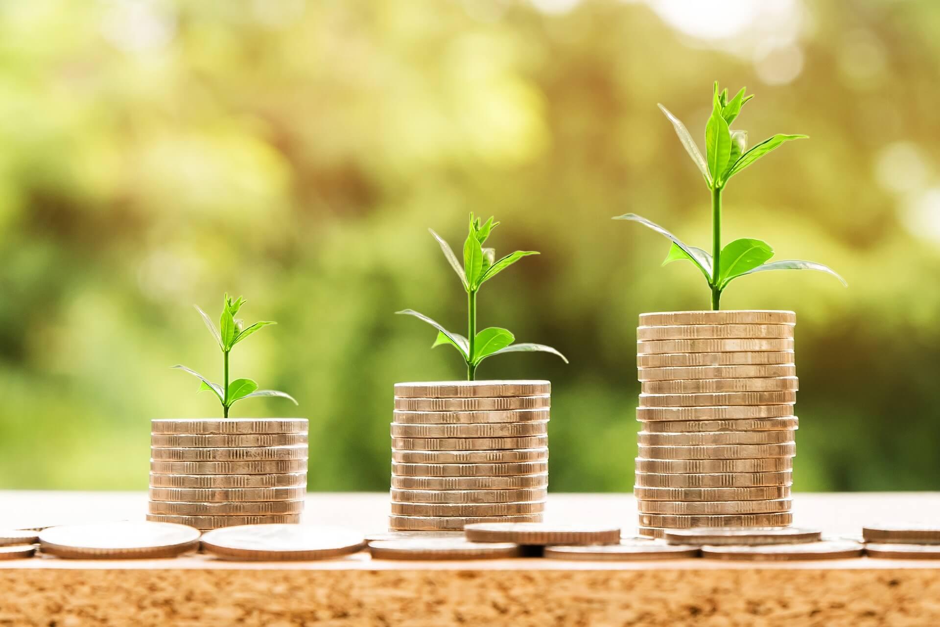 A importância de controlar os custos e despesas em sua empresa